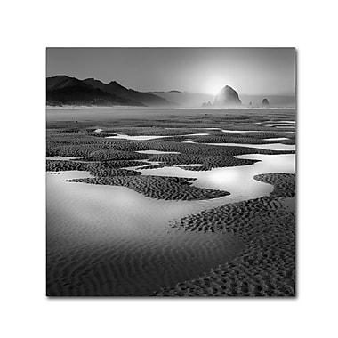 Trademark Fine Art ''Path'' by Moises Levy 24
