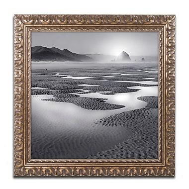 Trademark Fine Art ''Path'' by Moises Levy 16