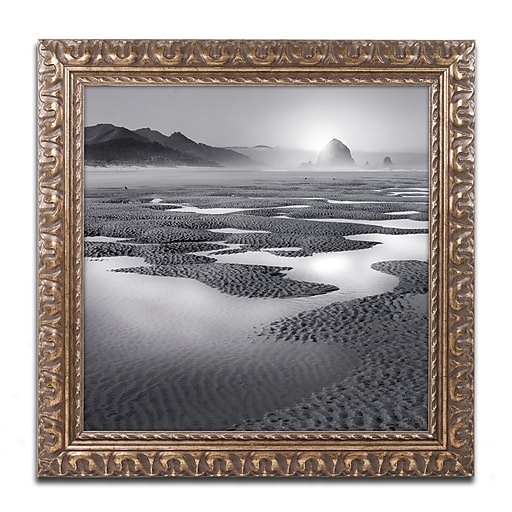 "Trademark Fine Art ''Path'' by Moises Levy 11"" x 11"" Ornate Frame (ALI1059-G1111F)"