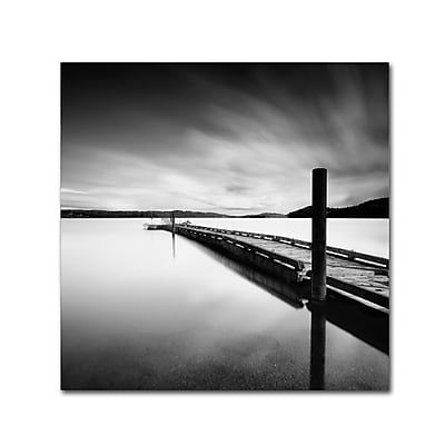 Trademark Fine Art ''Stand By'' by Moises Levy 18