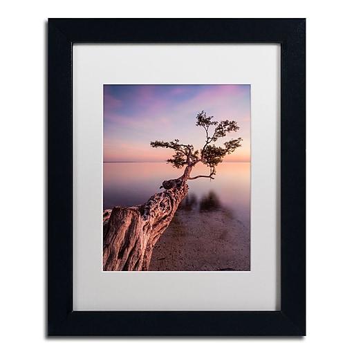 "Trademark Fine Art ''Water Tree IV'' by Moises Levy 11"" x 14"" White Matted Black Frame (ALI1066-B1114MF)"