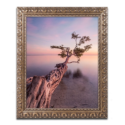"Trademark Fine Art ''Water Tree IV'' by Moises Levy 11"" x 14"" Ornate Frame (ALI1066-G1114F)"