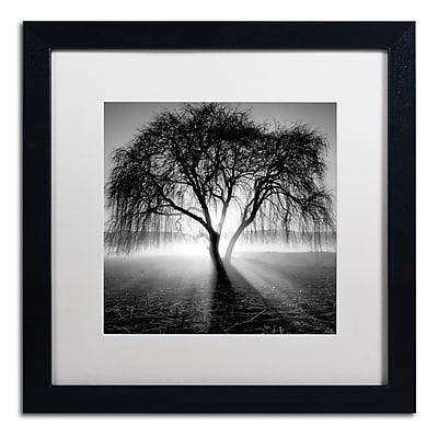 Trademark Fine Art ''Lightning Tree I'' by Moises Levy 16