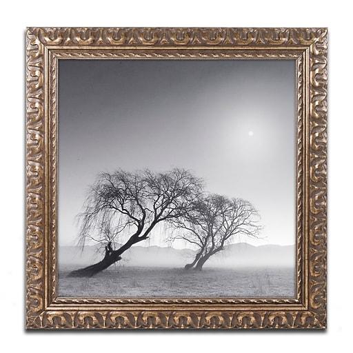 """Trademark Fine Art ''Reverencia'' by Moises Levy 11"""" x 11"""" Ornate Frame (ALI1081-G1111F)"""