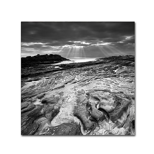 """Trademark Fine Art ''Sunset at Point Lobos'' by Moises Levy 35"""" x 35"""" Canvas Art (ALI1082-C3535GG)"""