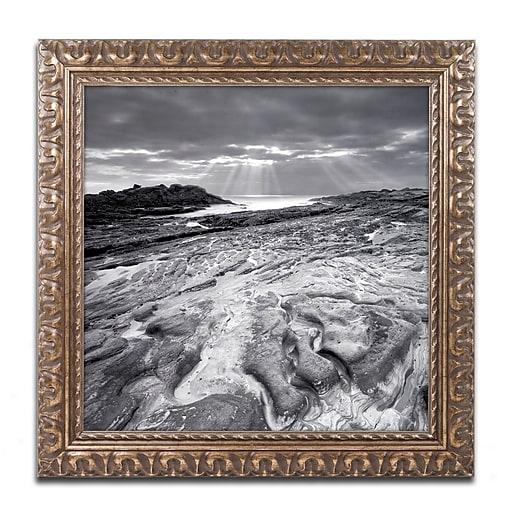 "Trademark Fine Art ''Sunset at Point Lobos'' by Moises Levy 11"" x 11"" Ornate Frame (ALI1082-G1111F)"