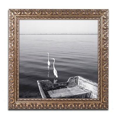 Trademark Fine Art ''2 Herons Leaving'' by Moises Levy 16