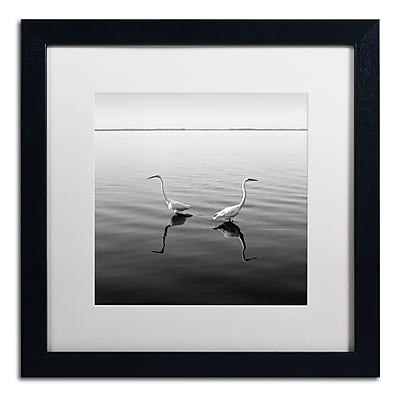 Trademark Fine Art ''2 Herons'' by Moises Levy 16
