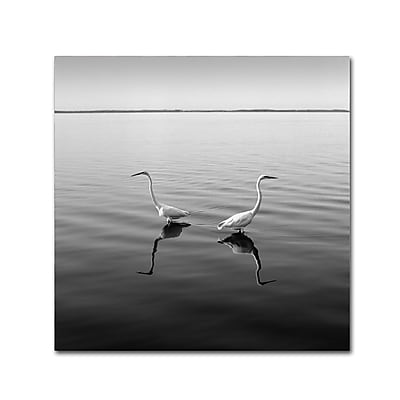 Trademark Fine Art ''2 Herons'' by Moises Levy 24