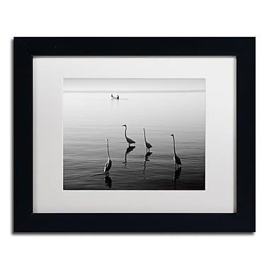 Trademark Fine Art ''4 Herons and Boat'' by Moises Levy 11