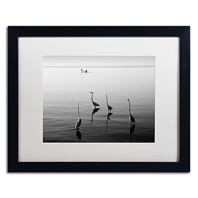 Trademark Fine Art ''4 Herons and Boat'' by Moises Levy 16