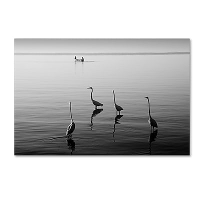 Trademark Fine Art ''4 Herons and Boat'' by Moises Levy 22