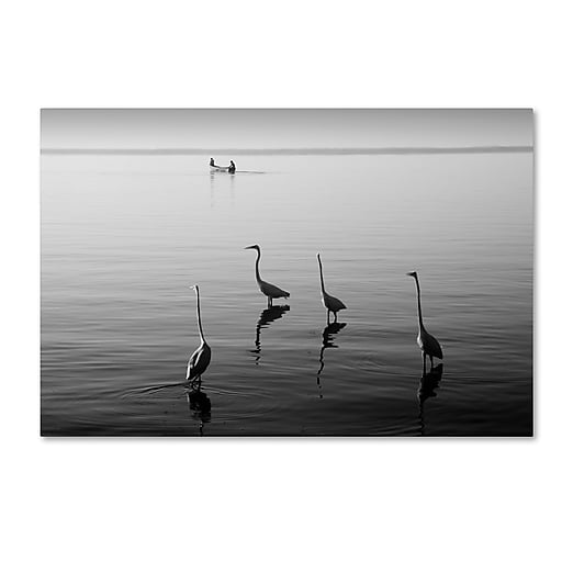 "Trademark Fine Art ''4 Herons and Boat'' by Moises Levy 22"" x 32"" Canvas Art (ALI1088-C2232GG)"