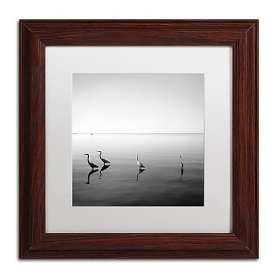 Trademark Fine Art ''4 Herons'' by Moises Levy 11
