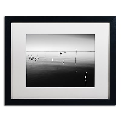 Trademark Fine Art ''11 Herons'' by Moises Levy 16