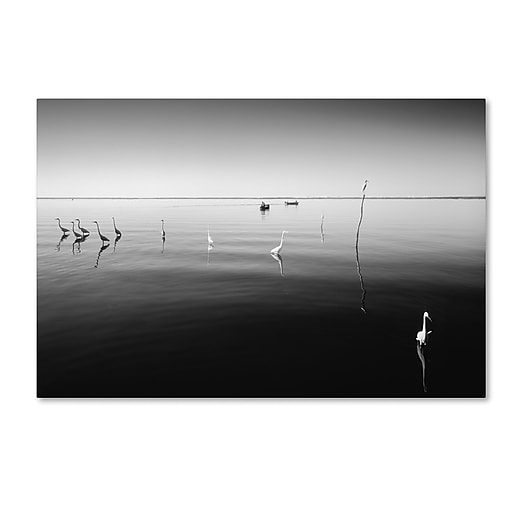 "Trademark Fine Art ''11 Herons'' by Moises Levy 12"" x 19"" Canvas Art (ALI1090-C1219GG)"