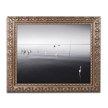 Trademark Fine Art ''11 Herons'' by Moises Levy 11