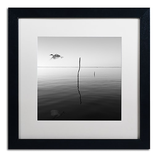 "Trademark Fine Art ''Fly'' by Moises Levy 16"" x 16"" White Matted Black Frame (ALI1092-B1616MF)"