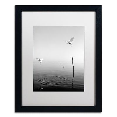 Trademark Fine Art ''Flying'' by Moises Levy 16