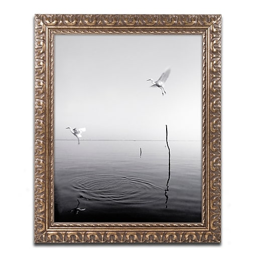 """Trademark Fine Art ''Flying'' by Moises Levy 11"""" x 14"""" Ornate Frame (ALI1093-G1114F)"""