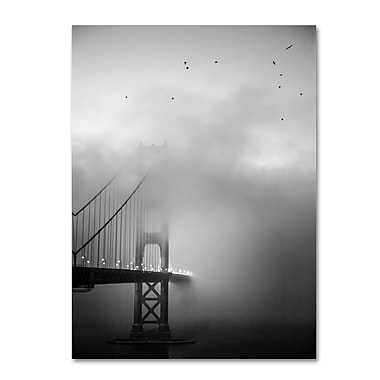 Trademark Fine Art ''Golden Gate and Birds'' by Moises Levy 24
