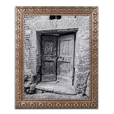 Trademark Fine Art ''Siena Door'' by Moises Levy 11