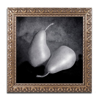 Trademark Fine Art ''Peras II'' by Moises Levy 11