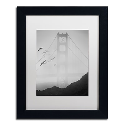 Trademark Fine Art ''Golden Gate Pier and Birds I'' by Moises Levy 11