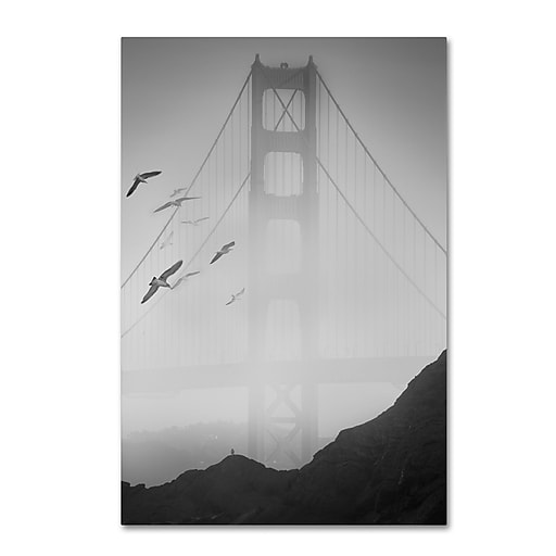 "Trademark Fine Art ''Golden Gate Pier and Birds I'' by Moises Levy 30"" x 47"" Canvas Art (ALI1112-C3047GG)"