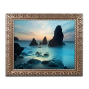 "Trademark Fine Art ''Rodeo Beach I'' by Moises Levy 11"" x 14"" Ornate Frame (ALI1116-G1114F)"