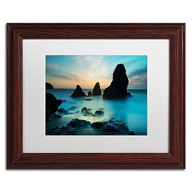 Trademark Fine Art ''Rodeo Beach I'' by Moises Levy 11