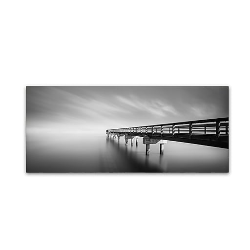 "Trademark Fine Art ''Infinity Panoramic'' by Moises Levy 20"" x 47"" Canvas Art (ALI1117-C2047GG)"