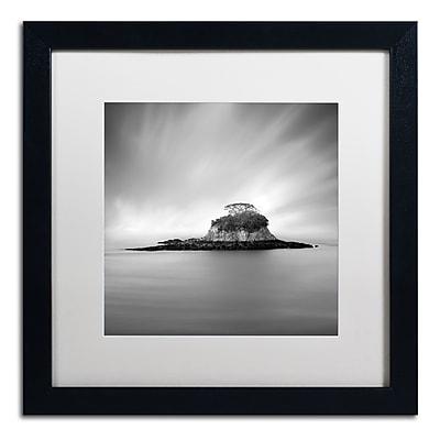 Trademark Fine Art ''Rat Island'' by Moises Levy 16