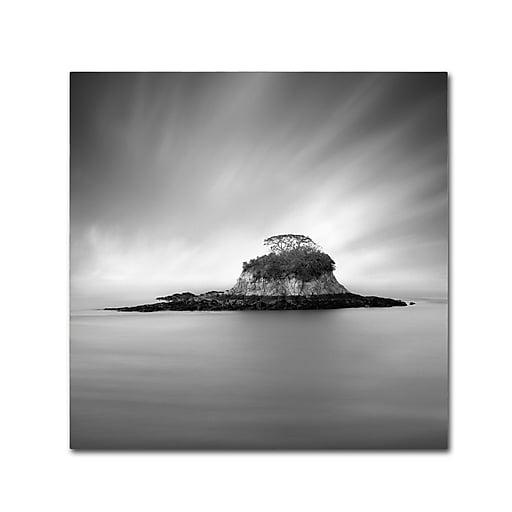 "Trademark Fine Art ''Rat Island'' by Moises Levy 24"" x 24"" Canvas Art (ALI1118-C2424GG)"