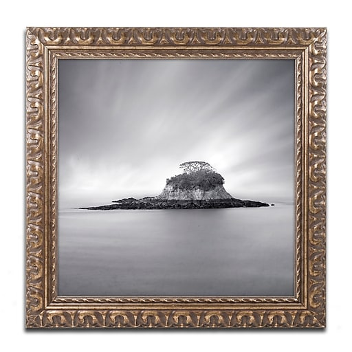 "Trademark Fine Art ''Rat Island'' by Moises Levy 11"" x 11"" Ornate Frame (ALI1118-G1111F)"