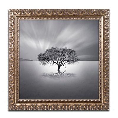 Trademark Fine Art ''Water Tree VIII'' by Moises Levy 11