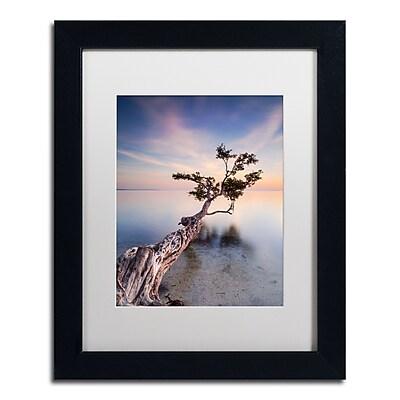 Trademark Fine Art ''Water Tree X'' by Moises Levy 11