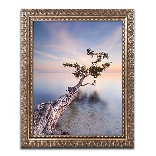 "Trademark Fine Art ''Water Tree X'' by Moises Levy 11"" x 14"" Ornate Frame (ALI1126-G1114F)"