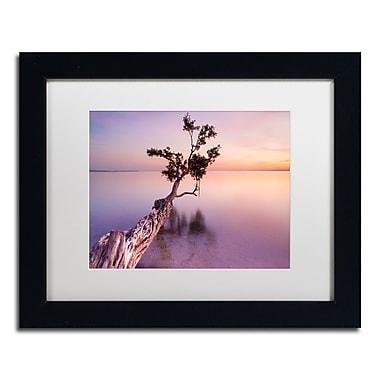 Trademark Fine Art ''Water Tree XI'' by Moises Levy 11