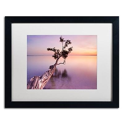 Trademark Fine Art ''Water Tree XI'' by Moises Levy 16