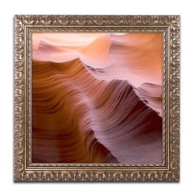 Trademark Fine Art ''Smooth I'' by Moises Levy 16