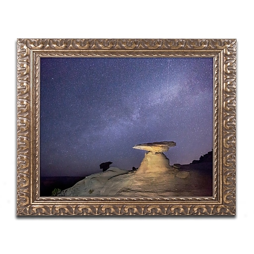 "Trademark Fine Art ''Starry Night in Arizona III'' by Moises Levy 11"" x 14"" Ornate Frame (ALI1139-G1114F)"