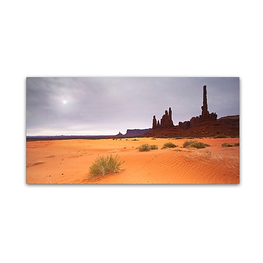 "Trademark Fine Art ''Monument Valley Panorama I'' by Moises Levy 12"" x 24"" Canvas Art (ALI1143-C1224GG)"