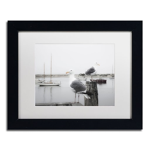 "Trademark Fine Art ''Two Seagulls & Boats'' by Moises Levy 11"" x 14"" White Matted Black Frame (ALI1147-B1114MF)"