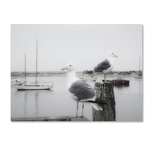 "Trademark Fine Art ''Two Seagulls & Boats'' by Moises Levy 14"" x 19"" Canvas Art (ALI1147-C1419GG)"