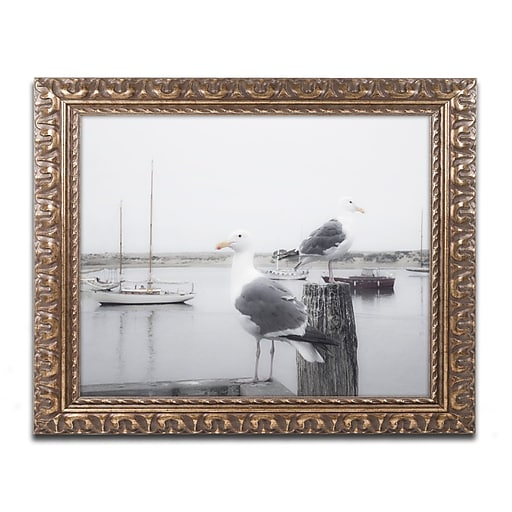 """Trademark Fine Art ''Two Seagulls & Boats'' by Moises Levy 11"""" x 14"""" Ornate Frame (ALI1147-G1114F)"""