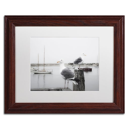 """Trademark Fine Art ''Two Seagulls & Boats'' by Moises Levy 11"""" x 14"""" White Matted Wood Frame (ALI1147-W1114MF)"""