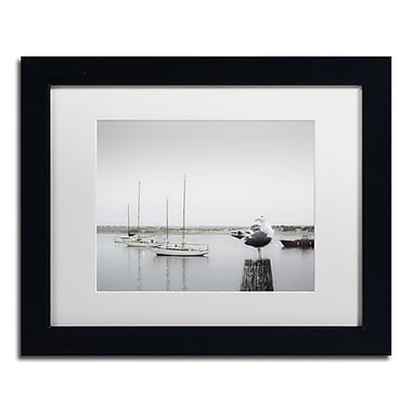 Trademark Fine Art ''Four Boats & Seagull'' by Moises Levy 11