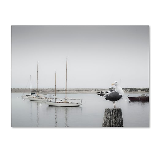 "Trademark Fine Art ''Four Boats & Seagull'' by Moises Levy 14"" x 19"" Canvas Art (ALI1148-C1419GG)"