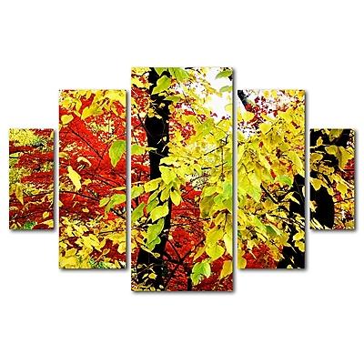 Trademark Fine Art ''Foliage'' by Ariane Moshayedi 3.3' x 4.8' Multi Panel Art Set (AM0067-P5-SET)